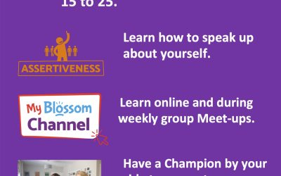 Blossom Ireland: New Assertiveness Course