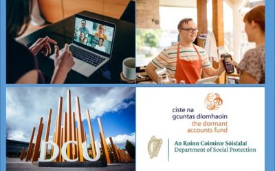 DCU Ability 'Introduction to Work' Online Course
